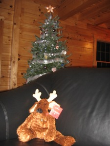 Comet, the reindeer, a gift when I was an au pair.
